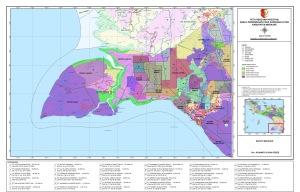 Peta investasi perusahan-perusahan dalam program MIFEE, 2010
